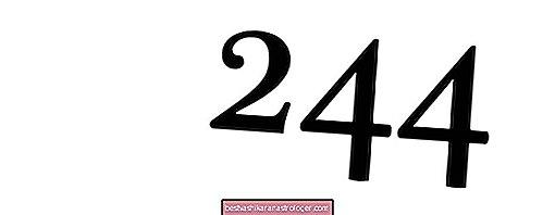 Engel Nr. 244 und seine Bedeutung
