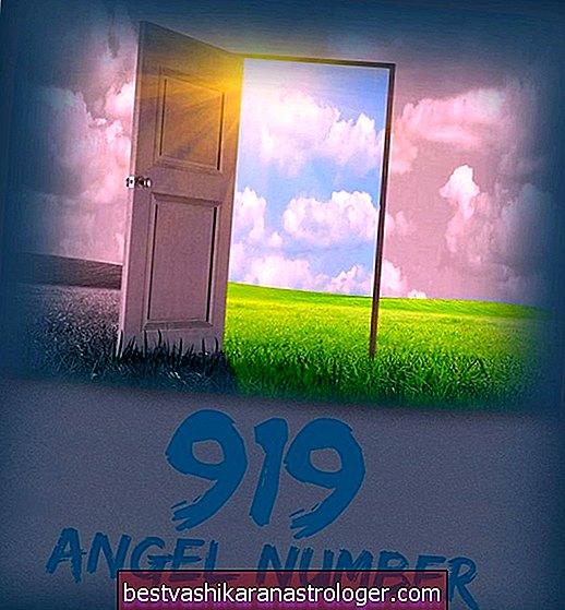 Engel Nr. 919 und seine Bedeutung