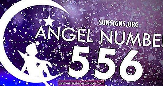 Ангел номер 556 Значение